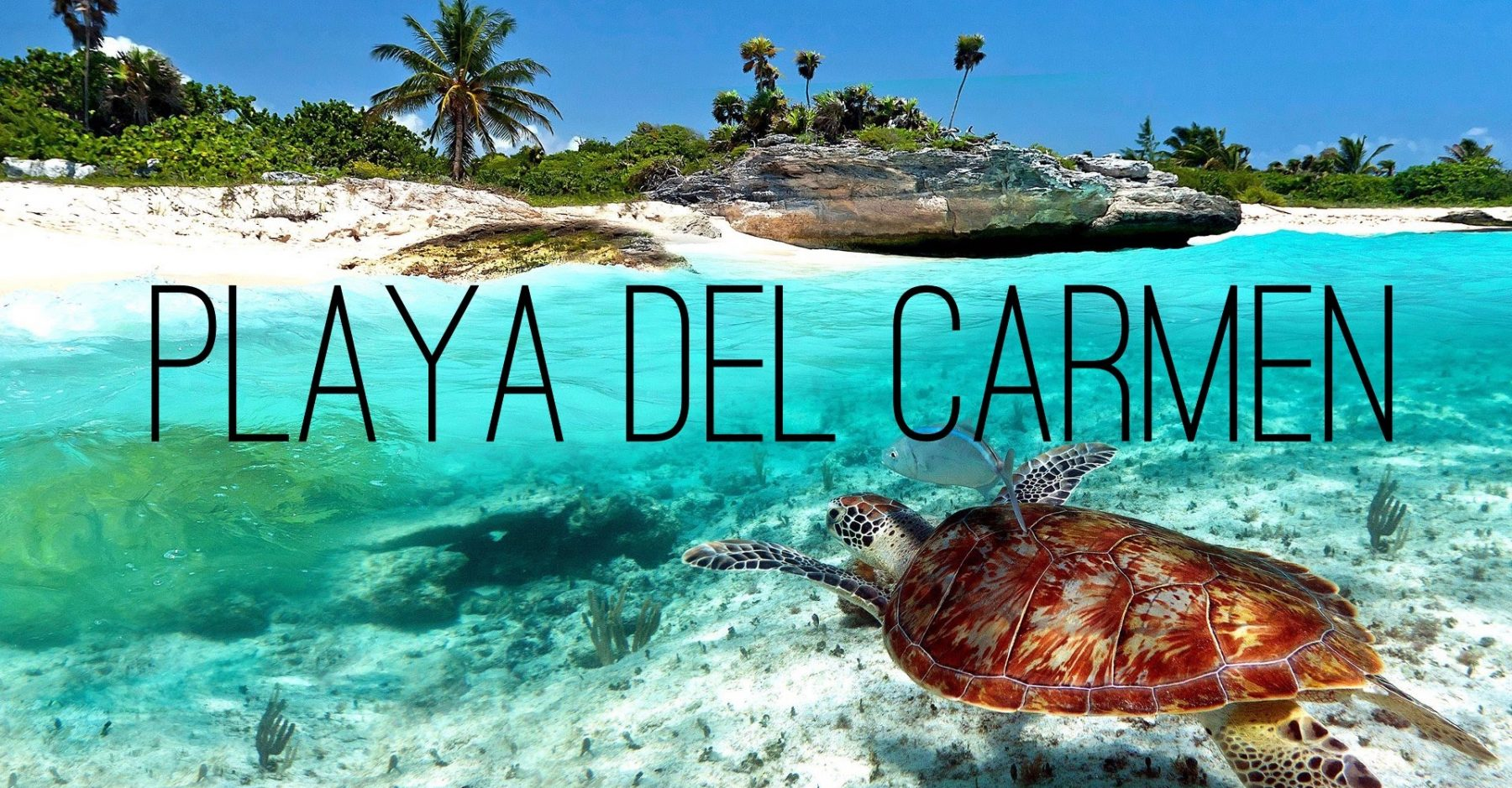 Century 21 Real Estate Playa Del Carmen